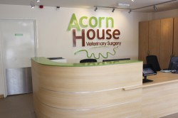 Acorn House Vets In Bedford - Reception