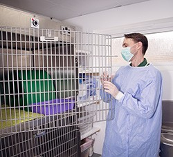 Paul - Senior Nurse at Acorn House Vets In Bedfordshire