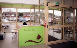 Cat Care Waiting Roon At Acorn House Vets